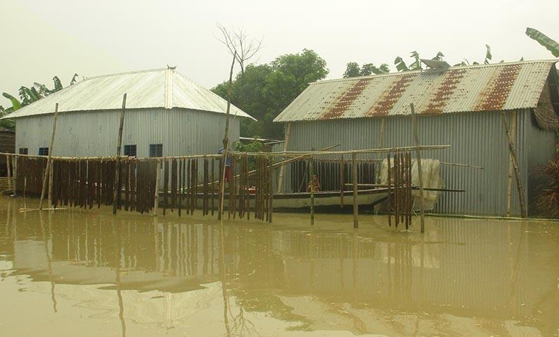 ফরিদপুরের চরাঞ্চলে পানিবন্দি প্রায় ৪ হাজার পরিবার