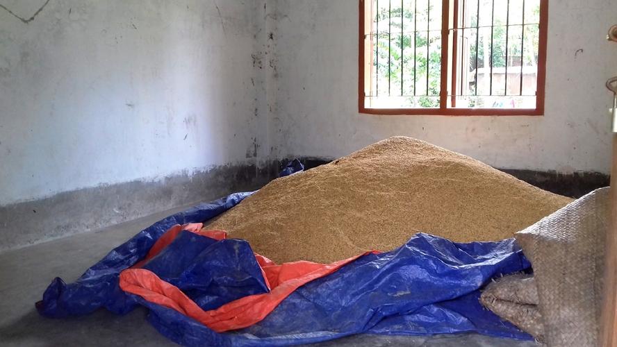 নবাবগঞ্জের যন্ত্রাইল ইউপি ভবন এখন ধানের গুদাম